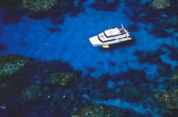 Reef cruise All Cairns Tours